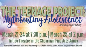The Teenage Project poster