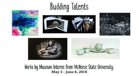 Budding Talents is on display from May 3-June 8