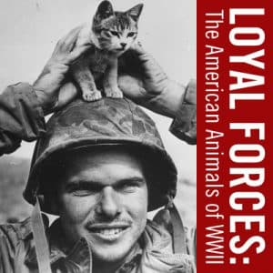 Toni Kiser's co-authored book cover Loyal Forces: The American Animals of World War II