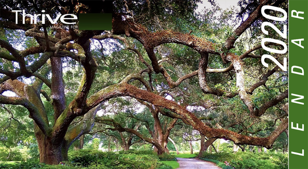 Large oak trees cover the front of the Thrive 2020 calendar