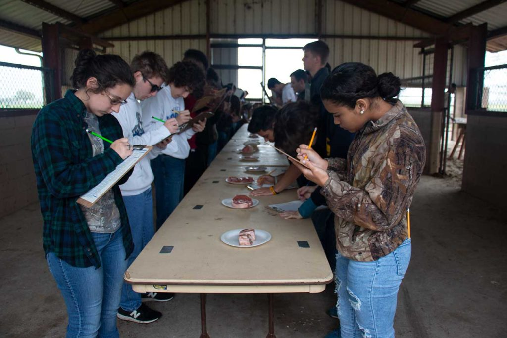 High school students judge meat cuts