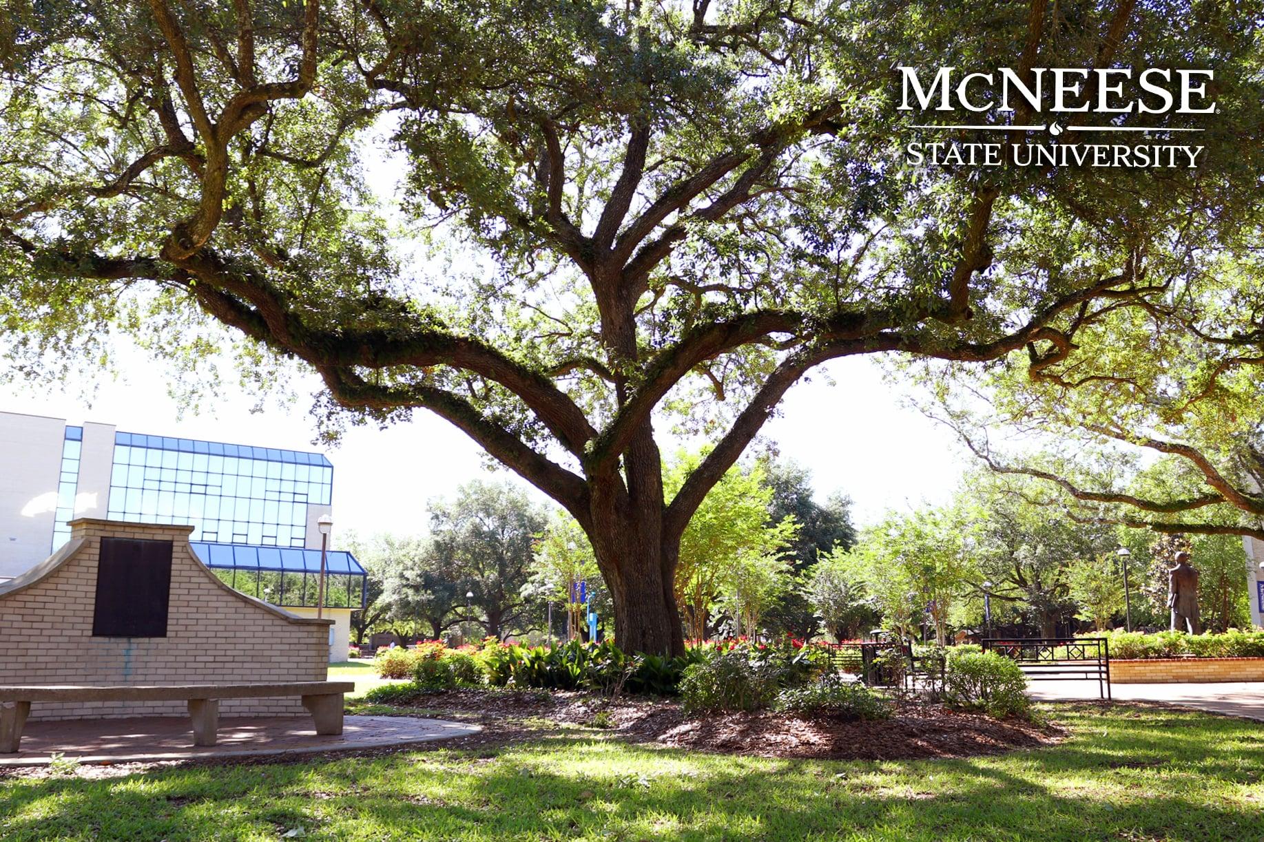 John McNeese Park-min