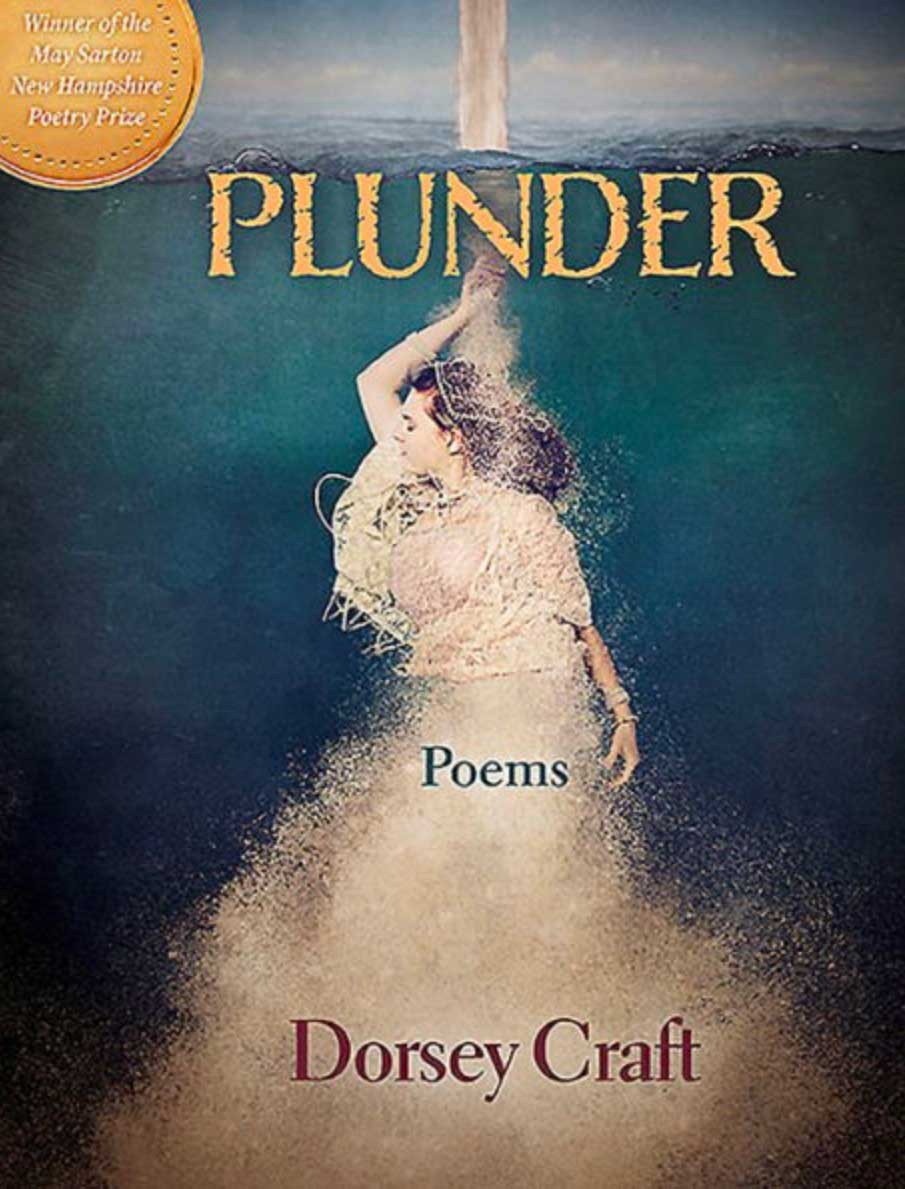 Plunder book cover