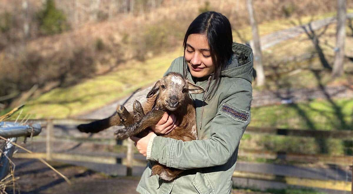 Gauri Awasthi holds a lamb while at Firefly Farms.