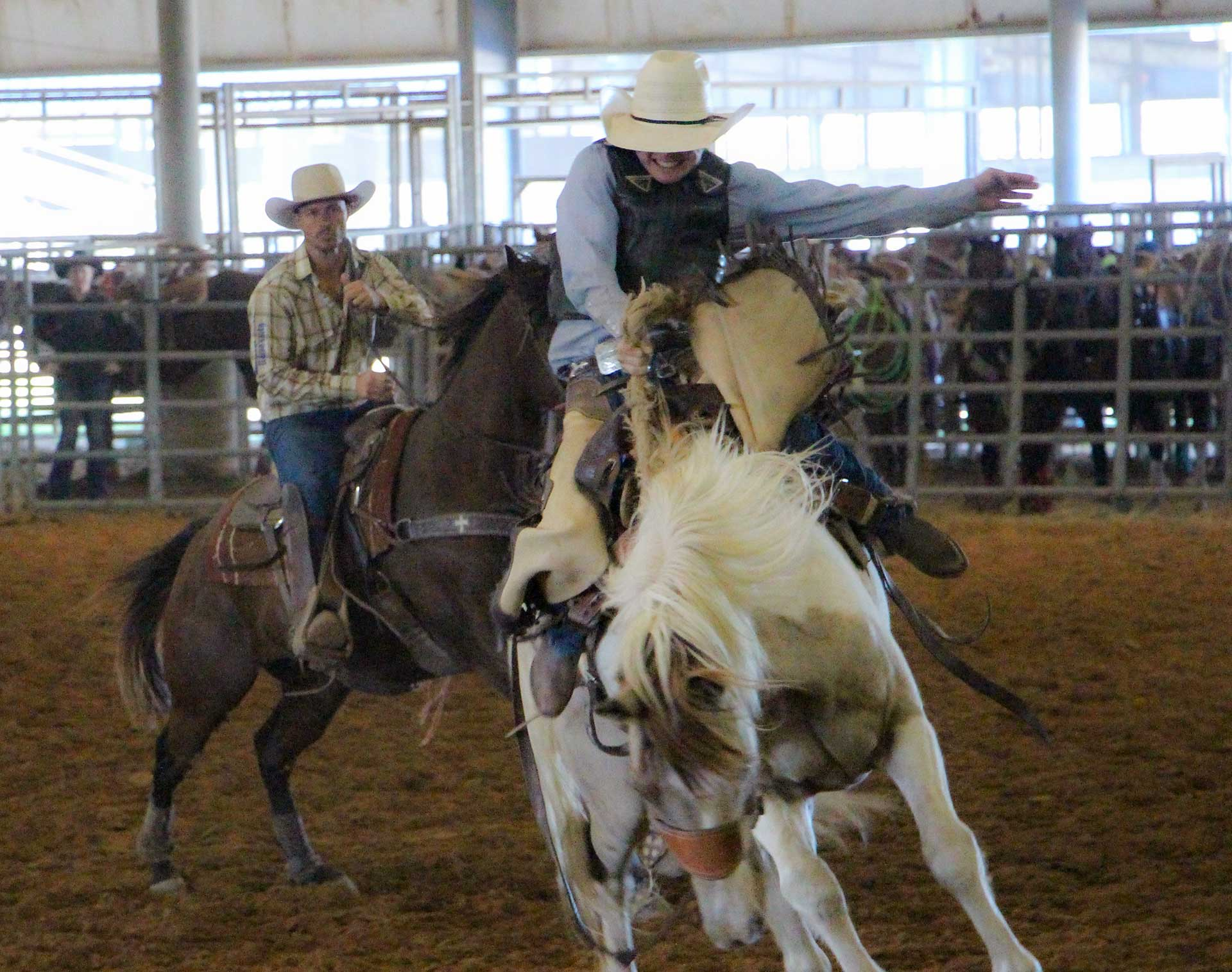 Cowboy competing at McNeese