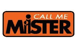 Call Me Mister logo